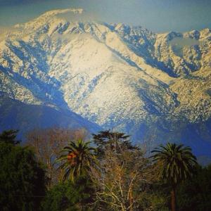 Снег и пальмы, выбор за вами.
